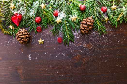 branch celebration christmas christmas ornament
